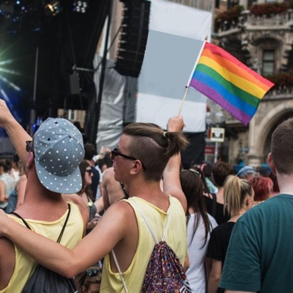 Prideflagga / Regnbågsflagga (Liten) multifärg