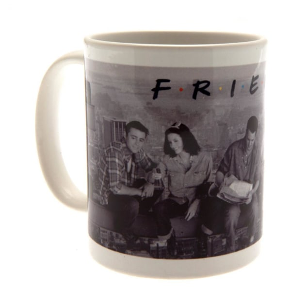 Friends Official Boxed Ceramic Mugg One Size Grey Grey One Size