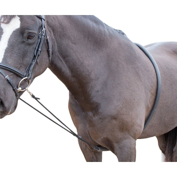 Shires Horse Lunging Aid One Size Black Black One Size