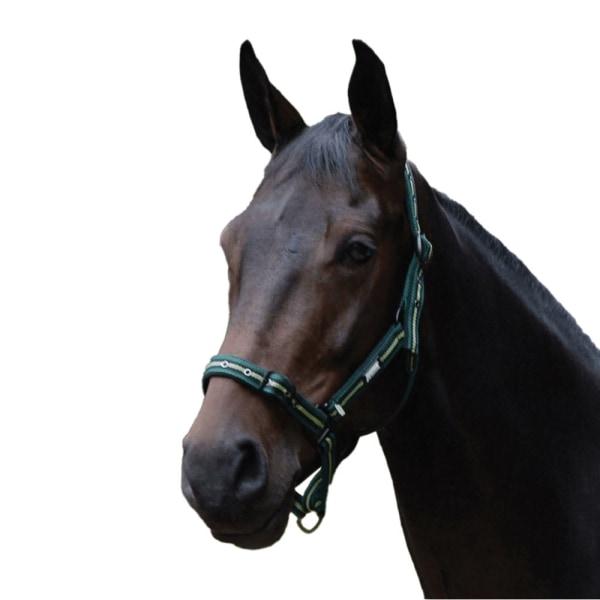 Roma Coordinate Headcollar Pony Dark Green / Black / Green Dark Green/Black/Green Pony