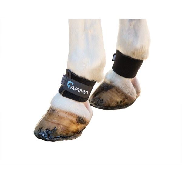 ARMA Horse Pastern Wraps (Pack of 2) One Size Black