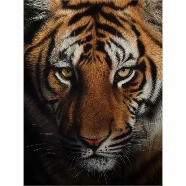 5D DIY full diamantmålning korsstygn handmålad tiger huvud brode Som på bilden 1