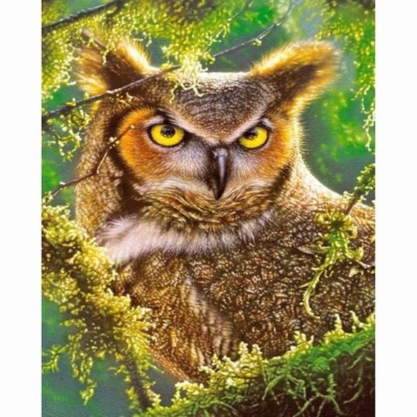 Full 5D DIY Diamond Painting Cross Stitch Wood Owl Rhinestone Br Som på bilden 1
