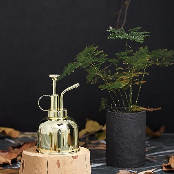 Mässingsvattenflaska Nordisk stil vattenburkar suckulenta växter