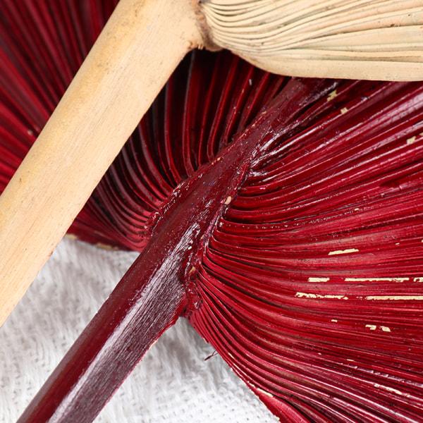 palm fläkt blad torkad blomma palm blad fönster mottagning fest konst B