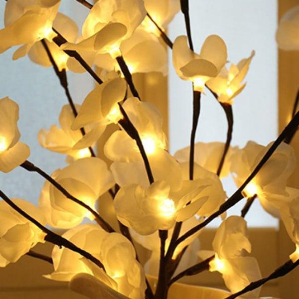 phalaenopsis trädgren ljus blommig ljus hem julfest Purple
