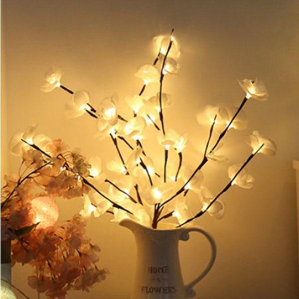 phalaenopsis trädgren ljus blommig ljus hem julfest White