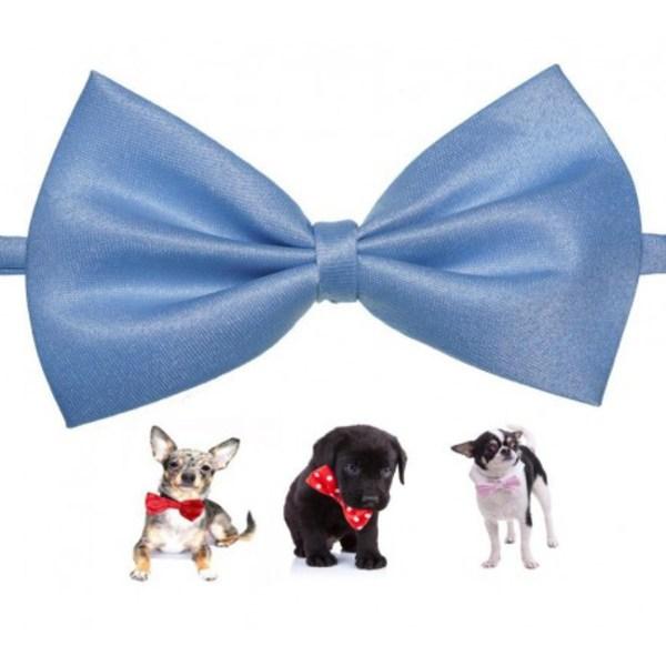 Snygg fluga till hund ljusblå