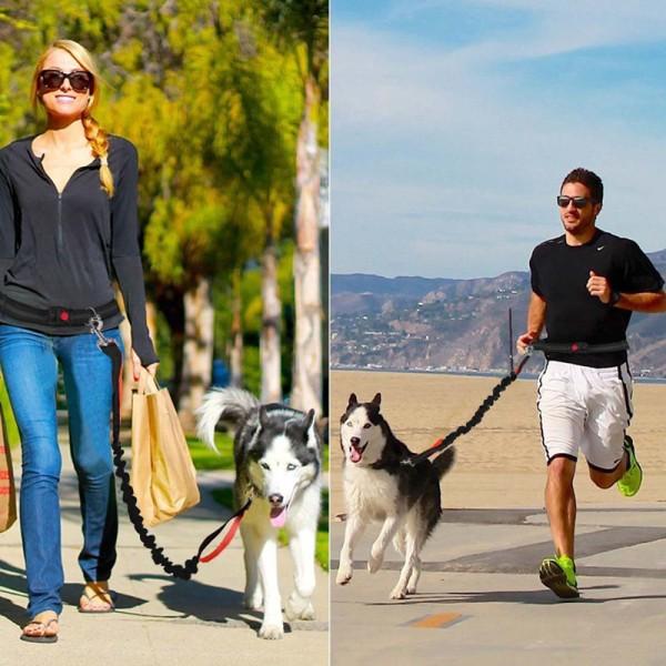 Utomhus sällskapsdjur hund kör koppel krage jogging bly justerbar Wa