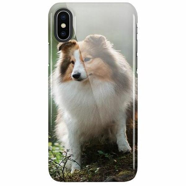 Apple iPhone X / XS LUX Mobilskal (Glansig) Collie Dog