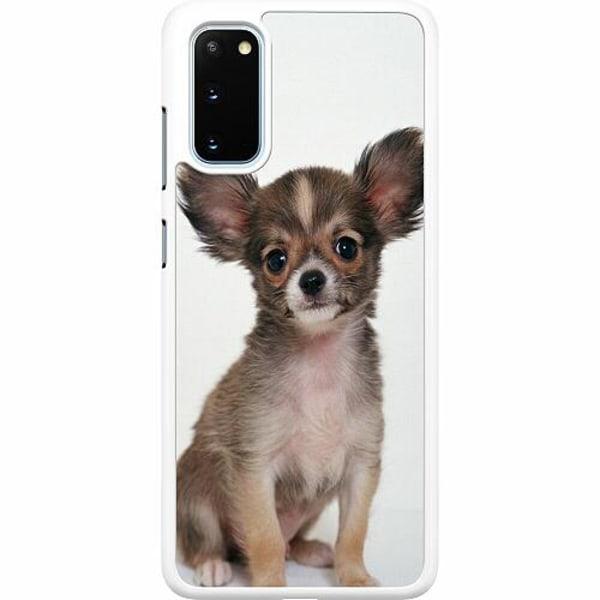 Samsung Galaxy S20 Hard Case (Vit) Chihuahua