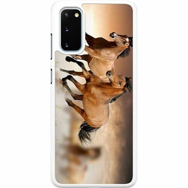 Samsung Galaxy S20 Hard Case (Vit) Hästar