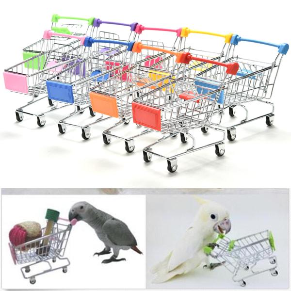 Papegoja Supermarket Kundvagn Barn Intelligens Tillväxt Rolig