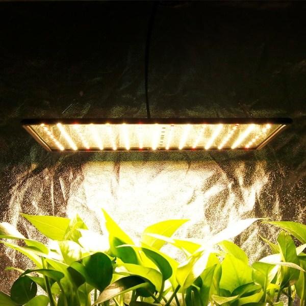Inomhus ledd 1000w 3500k växa ljus - panel fullspektrum phyto 1pc warm white UK