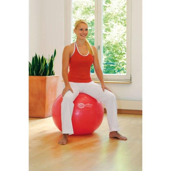 Sissel Träningsboll 65 cm röd SIS-160.062 Röd