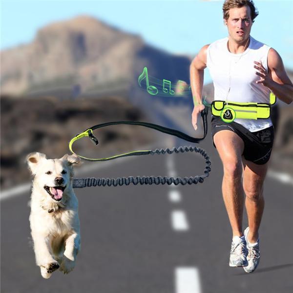 Hundkoppel-sport-löpbälte-midjebälte