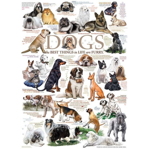 Cobble Hill Pussel - Olika hundraser 1000 bitar multifärg