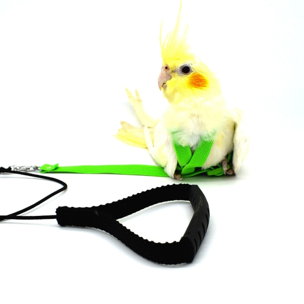 anti-bite flygande träning rep papegoja fågel husdjur koppel kit Harnes Pink