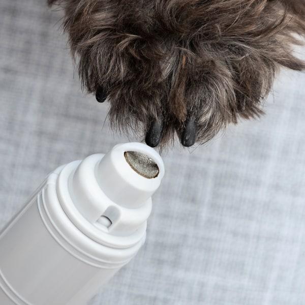 InnovaGoods Elektrisk Klofil för husdjur