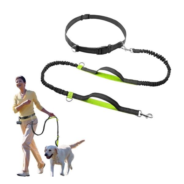 Hundkoppel för löpning